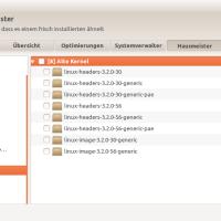 Alte Kernel unter Ubuntu löschen