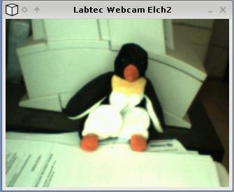 Erster Screenshot von der Labtec Cam