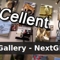 Ersatz für NexGEN Gallery